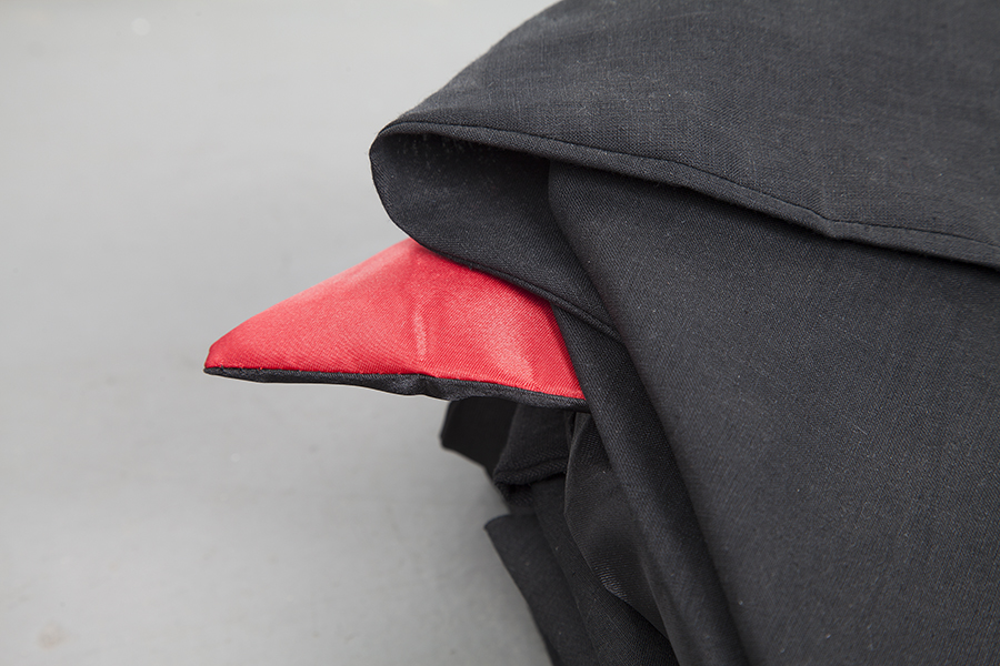 image of Dracula Capes
